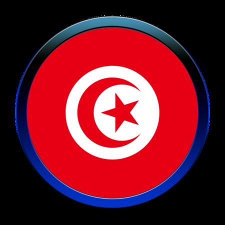 Group logo of TRANSDAIRY Nano-Biotech Living Lab @APIA TUNISIA