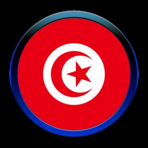 Group logo of TRANSDAIRY ICT Living Lab  @APII TUNISIA